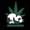 weedpanda-logo1-przezrocz_Obszar-roboczy-1-e1600353966169